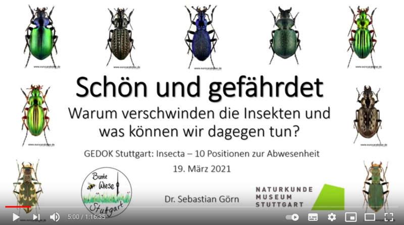 Vortrag Dr. Sebastian Görn